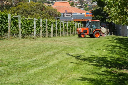 Tractor, farming, vinyard, MONA (Tom Wakefield)