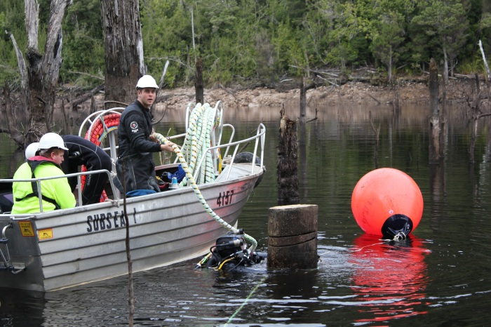 Utas researchers assist in building the case for underwater logging