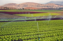 Captured by Simon Desalis - The $90 million irrigation scheme has been earmarked for five proposed tranche-2 irrigation schemes across Tasmania.