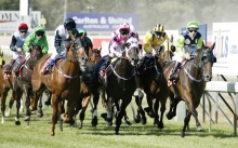 launceston-cup