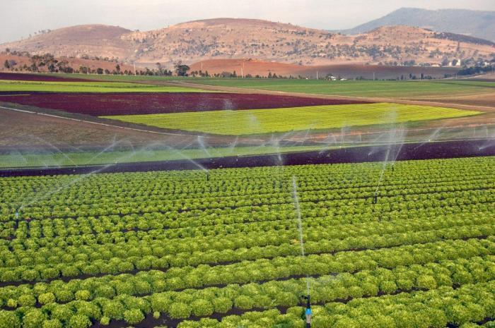 Tasmanian Irrigation Scheme by Simon DeSalis